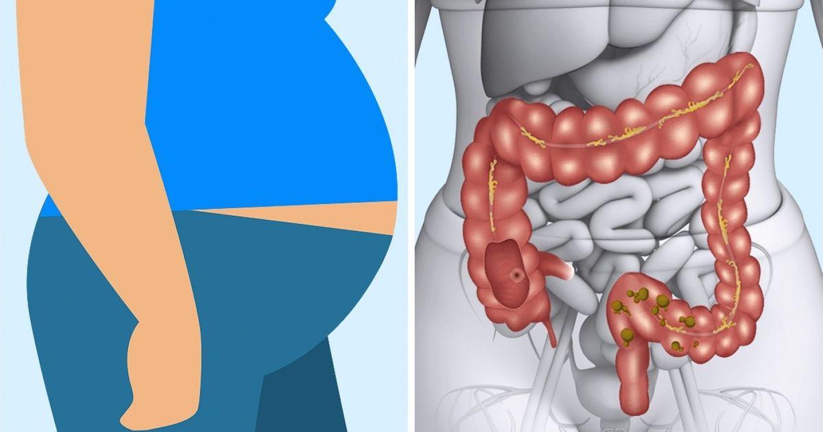 curăță colonul dvs ajută la pierderea în greutate)